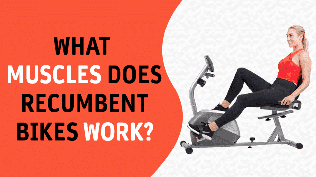 What Muscles Does Recumbent Bikes Work
