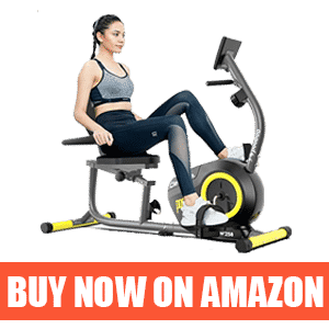 Pooboo Magnetic Exercise Bike - Best Stationary Recumbent Bike for Seniors