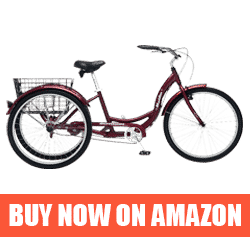 Schwinn Meridian - Best Recumbent Road Bike