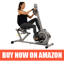 Best Sunny Recumbent Bike for the Money